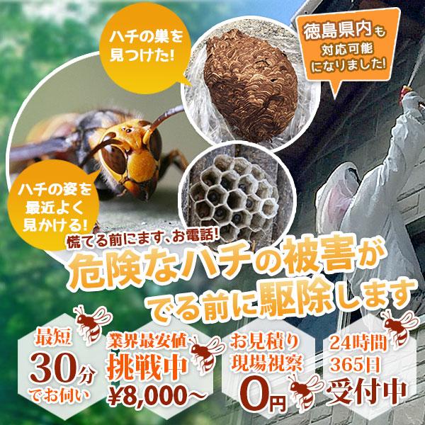 危険なハチの被害がでる前に駆除します。